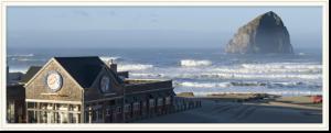 pelican pub & rock