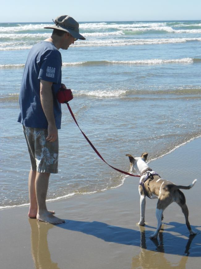 Puppy meets ocean