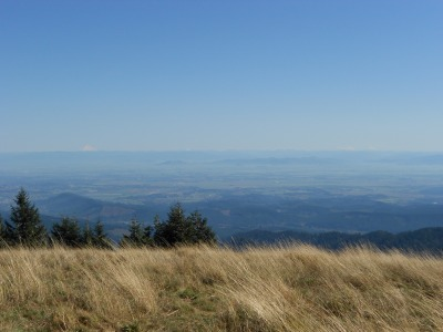 Willamette Valley from Mary's Peak