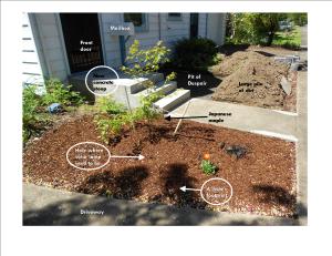 Front yard diagram