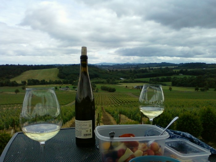 Wine bottle, glasses, food on table overlooking vineyard