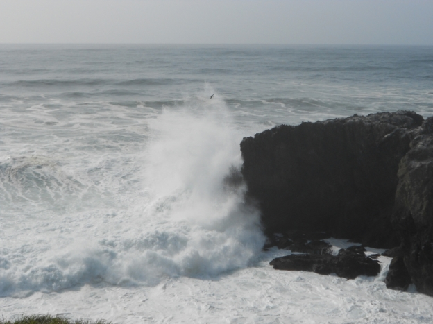 Huge wave crashing against rock