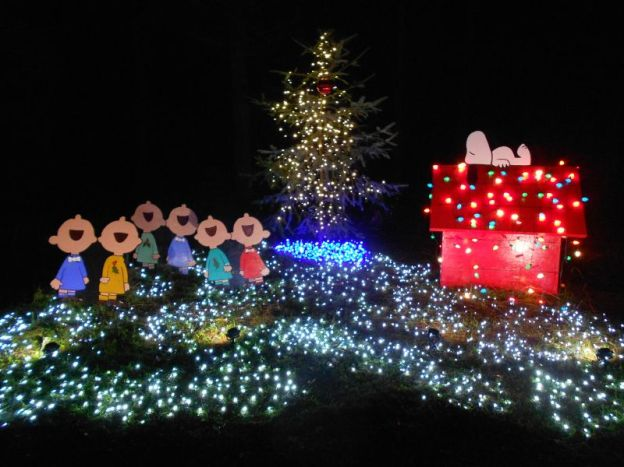 Charlie Brown Christmas light display
