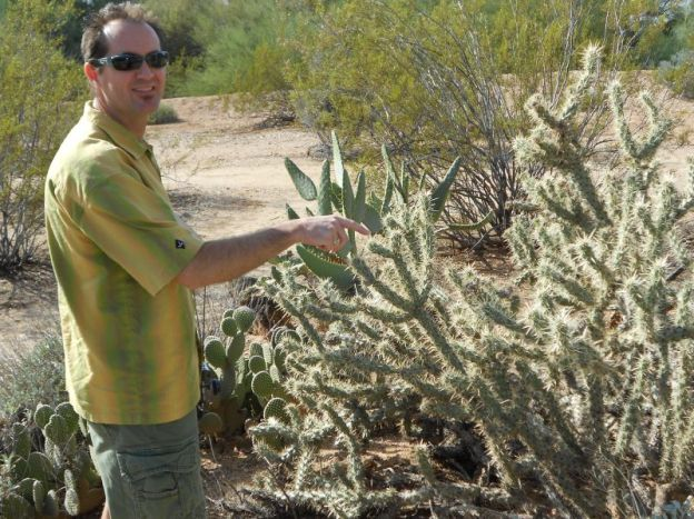 Man pointing at cactus