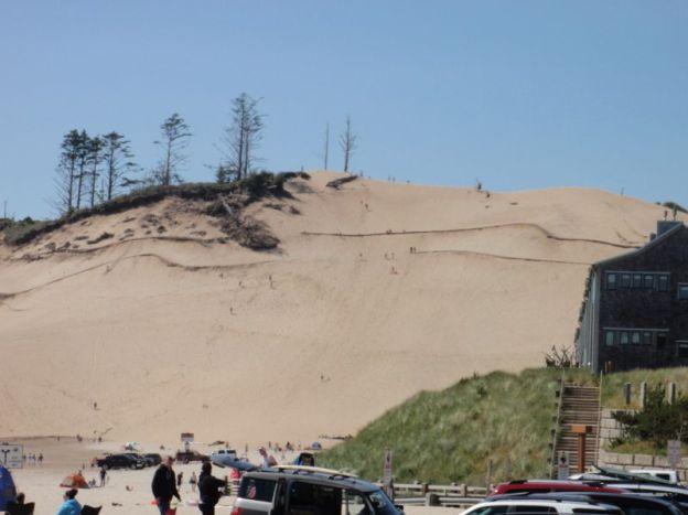 Cape Kiwanda dune