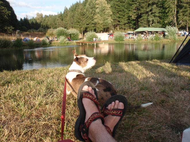 Man's feet and dog with lake and tents in background