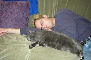 Photo of blonde man and gray cat asleep on green couch